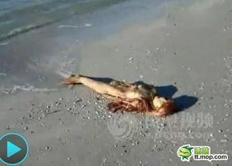 世界上有没有美人鱼 美国政   世界 未解之谜美人鱼 实拍海滩高清图片