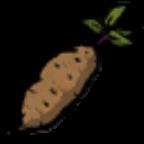 甘薯.png