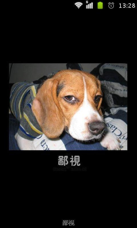可爱动物表情_360手机助手