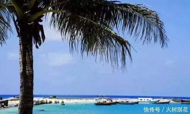 正文  西沙群岛位于南海的西北部,海南岛东南方,隶属中国海南省三沙市