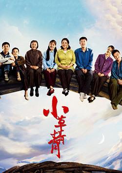 小草青青(全55集)
