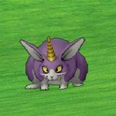 冲锋兔.jpg