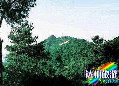 达县铁山森林公园位于达县铁山以东图片