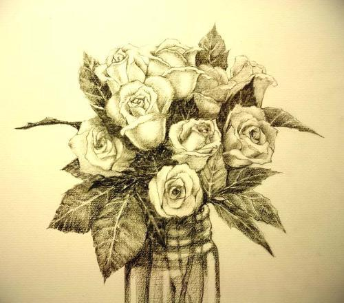 玫瑰花静物素描图片 玫瑰花的素描