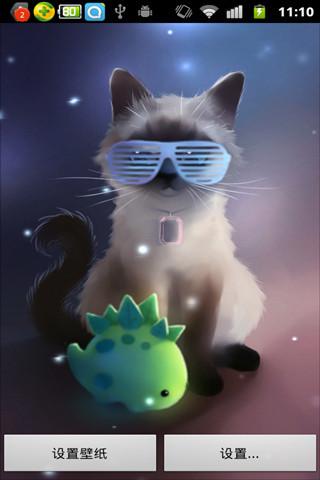 喜马拉雅猫动态壁纸_360手机助手