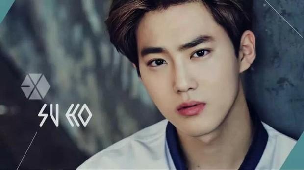 exo k 的成员介绍,包括照片