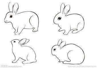 怎样画兔子简笔画