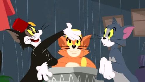 新猫和老鼠之三只猫的友谊