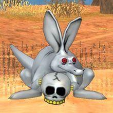 圣银颅骨袋鼠.jpg
