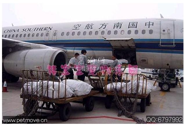 飞机免费托运多少寸