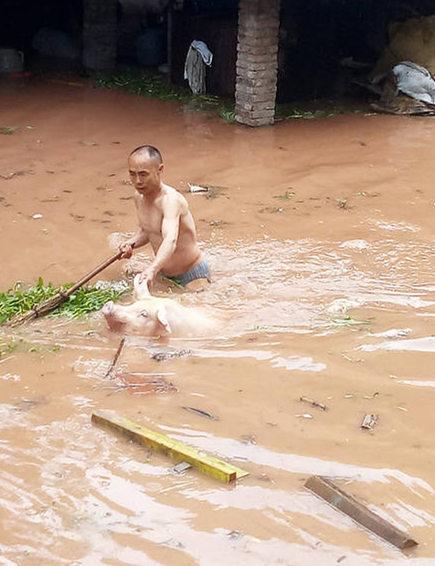 【转】北京时间      重庆暴雨 社区干部帮转移生猪现场 - 妙康居士 - 妙康居士~晴樵雪读的博客