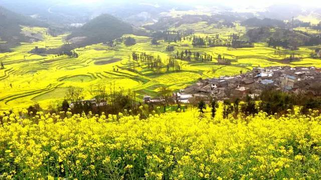 中国最美旅行时间表,对的时间去对的地方看最美的风景!    【图文转载】 - 兰州李老汉 - 兰州李老汉(五级拍客)